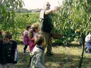 Visite scolaire Cueillette des pêches b 300x226 Les objectifs du Verger conservatoire du Vernet